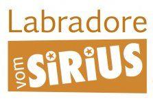 Labradore vom Sirius